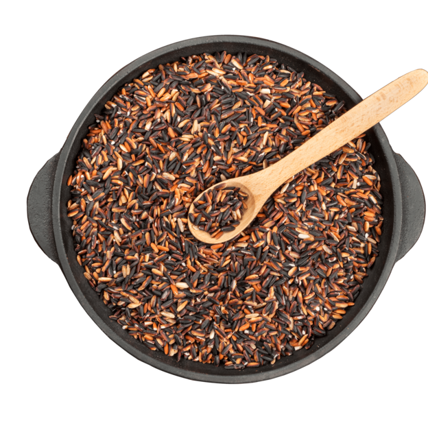 Black Rice, Supplier and Exporter in India | Caprine Agrotech